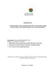 Ocena Strategii rozwoju energetyki odnawialnej oraz kierunki ...