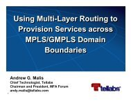 Using Multi-Layer Routing to Provision Services across MPLS ...
