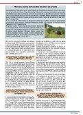 prin podul calafat – vidin - Clubul Oamenilor de Afaceri - Club Feroviar - Page 7