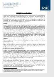 Merkblatt Berufsfeldpraktikum - Professional School of Education ...
