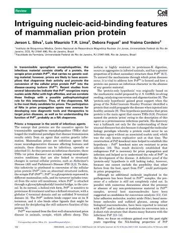 Intriguing nucleic-acid-binding features of mammalian ... - Cromatina