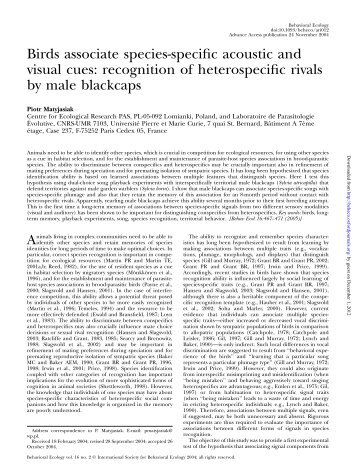 recognition of heterospecific rivals by male blackcaps