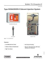 Type DOSAODOR-D Odorant Injection System - Control Southern Inc.