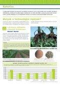 Kukorica - Kwizda - Page 2