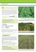 Kukorica - Kwizda - Page 3