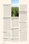 Etanolduto - Canal : O jornal da bioenergia - Page 6