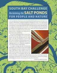article - South Bay Salt Pond Restoration Project