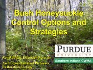 Asian Bush Honeysuckle Control Options and Strategies