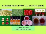 Explanation for UPOV TG of Sweet potato