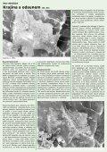 Informační bulletin SMO - březen 2008 - Svaz marginálních oblastí - Page 3