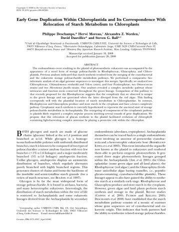 Early Gene Duplication Within Chloroplastida and Its - Genetics