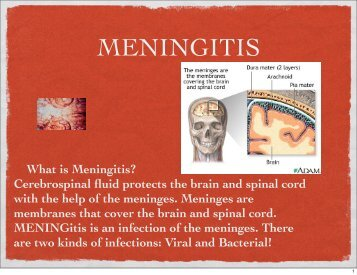 What is Meningitis? Cerebrospinal fluid protects the brain and spinal ...