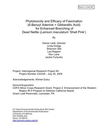 Phytotoxicity and Efficacy of Fascination (6-Benzyl ... - Heiner Lieth