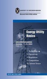 PDF version of brochure - Wisconsin Public Utility Institute