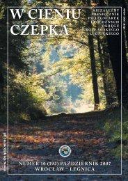 PAŹDZIERNIK 2007 ( 1036 kB) - Dolnośląska Okręgowa Izba ...