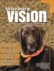 fall 2006 - The University of Tennessee College of Veterinary Medicine