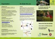 Naturerbe Buchenwälder - Nationalpark Steigerwald