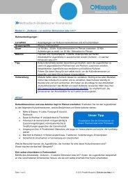 PDF: Thema Identität bilden - Modul 3 - Mixopolis