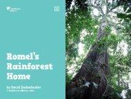 Urakepe - Rainforest Alliance
