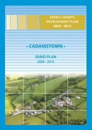 Cadamstown.pdf - Offaly County Council