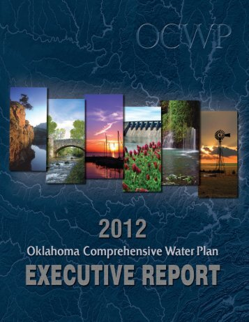 2012 Update OCWP Executive Report - Water Resources Board