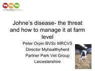 Johne's disease-the threat and how to manage it - Dairy ...