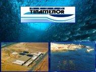 evolución del grupo tinamenor - Innovamar