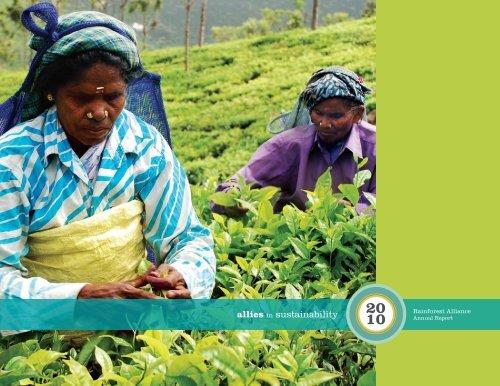 Annual Report - Rainforest Alliance