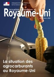 La situation des agrocarburants au Royaume-Uni