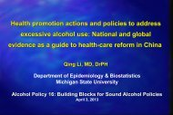 Health promotion actions and policies to address excessive alcohol ...