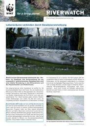 Lebensräume verbinden durch Gewässervernetzung - WWF Schweiz
