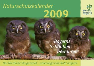 BN Kalender 2009_18.FH10 - Nationalpark Steigerwald