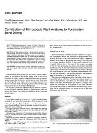 Contribution of microscopic plant anatomy to postmortem bone dating