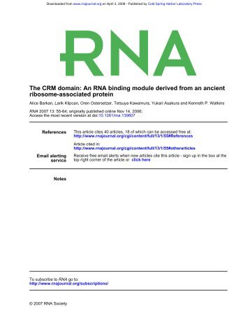 ribosome-associated protein The CRM domain: An RNA binding ...