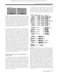 ribosome-associated protein The CRM domain: An RNA binding ... - Page 6