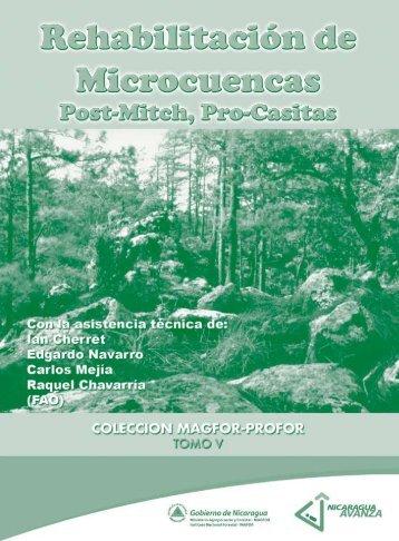 rehabilitacion de microcuencas post mitch - magfor