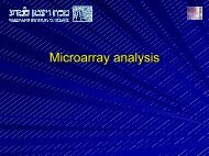 Microarray Data Exploration