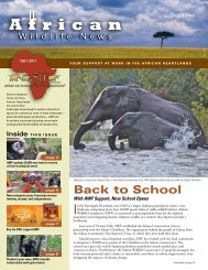 Read More - African Wildlife