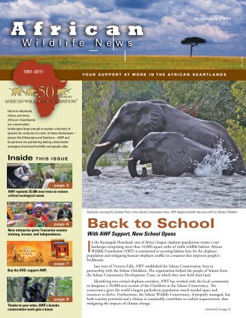 Read More - African Wildlife