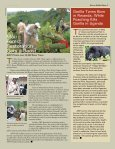 Read More - African Wildlife - Page 3