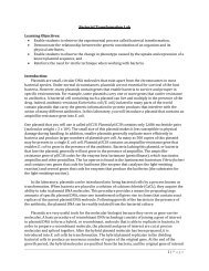 1 | Page Bacterial Transformation Lab Learning Objectives: • Enable ...