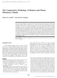 The Comparative Pathology of Human and Mouse Mammary Glands