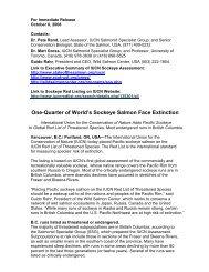 One-Quarter of World's Sockeye Salmon Face Extinction