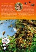 Young Panda-Aktuell, Ausgabe 07.2011 (Bienen) - Seite 2