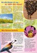 Young Panda-Aktuell, Ausgabe 07.2011 (Bienen) - Seite 5