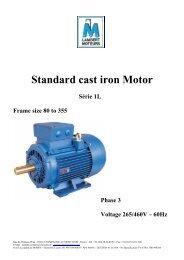 Standard cast iron Motor - LAMBERT MOTEURS