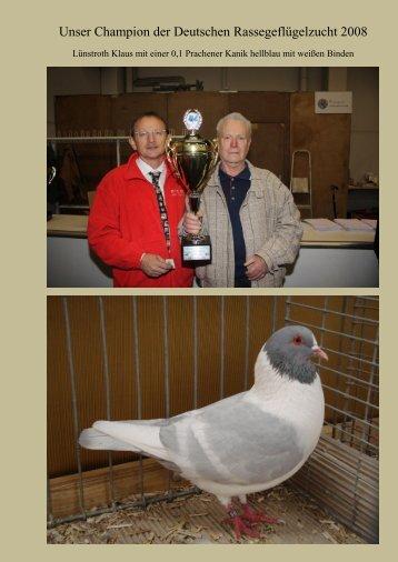 Unser Champion der Deutschen Rassegeflügelzucht 2008