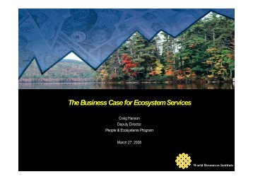 The Business Case for Ecosystem Services - ECNC