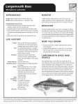 Largemouth Bass - The State of Water - Page 2
