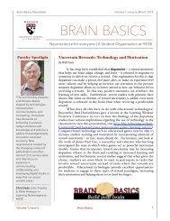 Brain Basics March Newsletter